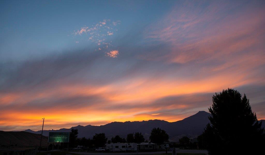 Sunrise over the park